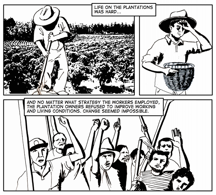 Excerpt from the History of Authentic Fair Trade by Equal Exchange