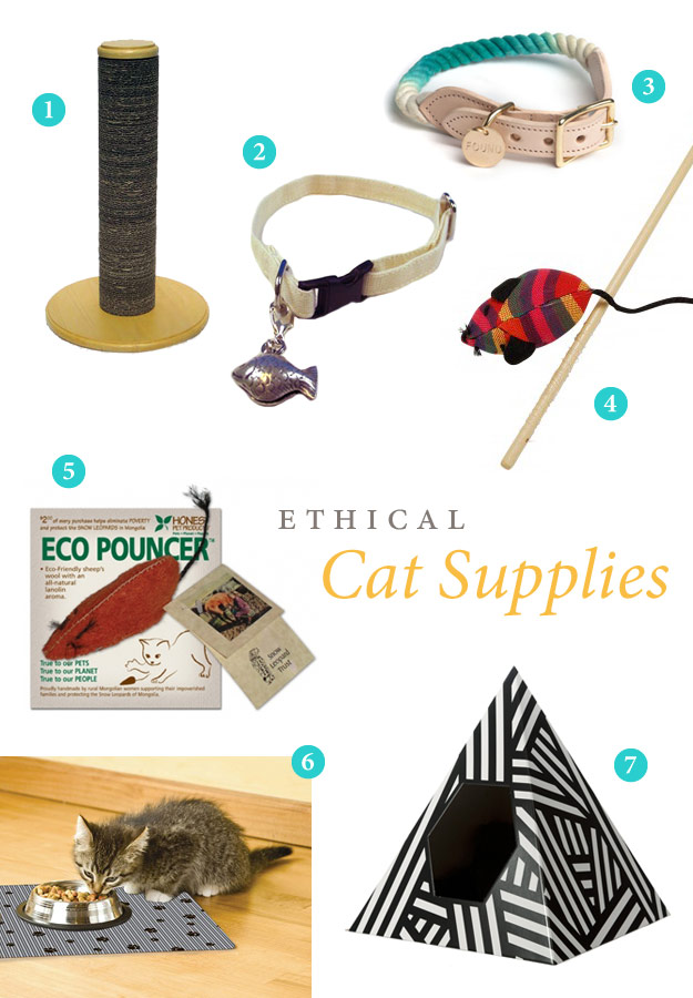 Collage of ethical cat supplies